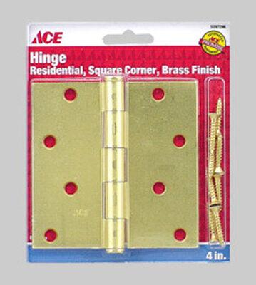 Ace Brass Residential Hinge 4 in. L Satin Brass 1 pk