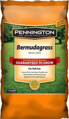 Pennington Bermuda Full Sun Grass Seed 1 lb.