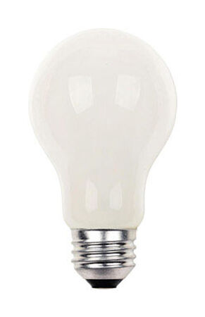 Westinghouse Halogen Light Bulb 42 watts 760 lumens 3000 K A-Line A19 Medium Base (E26) 12 pk