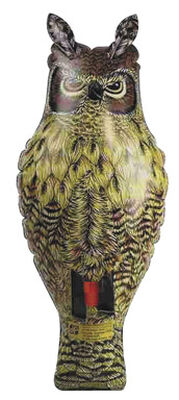 Dalen Inflatable Great Horned Owl For Birds Animal Repellent 2 ft.