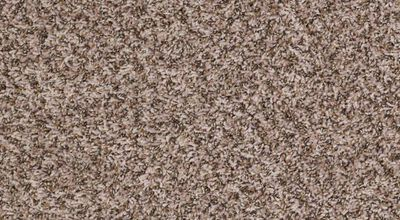 Shaw Ride - Color Cool Umber 15 ft. Carpet - Sold by sqft