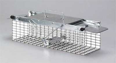 Havahart Small Live Catch Animal Trap For Rats Chipmunks Squirrels