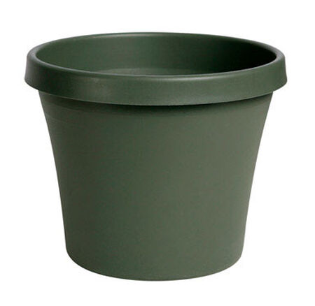 Bloem Terrapot Thyme Green Resin Traditional Planter 10.7 in. H x 12 in. W