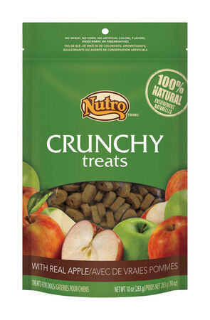 Nutro Crunchy Adult Dog Treats Dried Apples 10 oz. 1