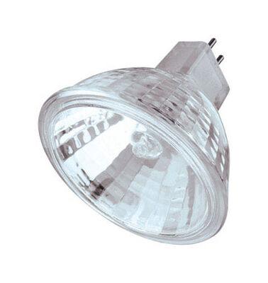 Westinghouse 50 watts 500 lumens 3050 K GU5.3 Floodlight Clear MR16 Halogen Light Bulb