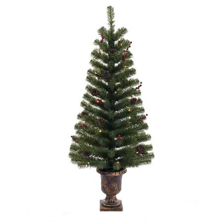 Celebrations 4 ft. Northern Pine Incandescent 35 count Northern Pine Entrance Tree
