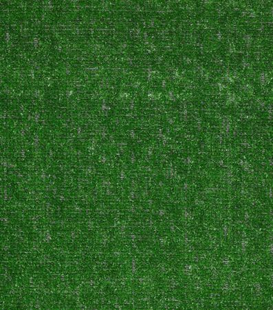 Carpet Grass Tactic Pasture 6' - sold by sqft