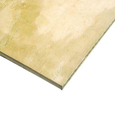 "Treated BC Plywood 4' x 8' x 3/4"""