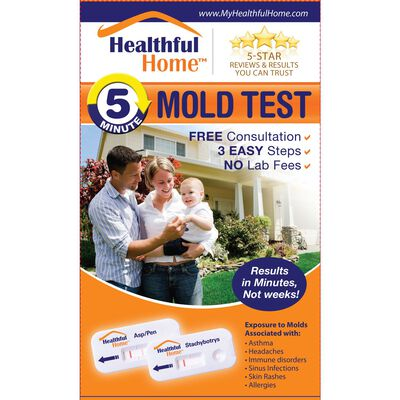 Healthful Home Mold Test Kit