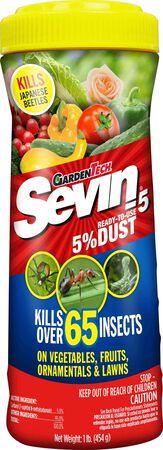 GT Sev in Dust 1 lb