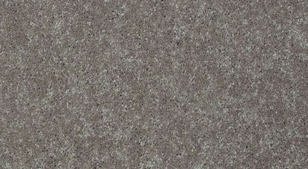 Shaw Well PLAYED I 12' - Color Cool Umber 15 ft. Carpet - Sold by sqft