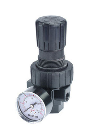 Tru-Flate Compact Regulator with Gauge 3/8 in. NPTF T