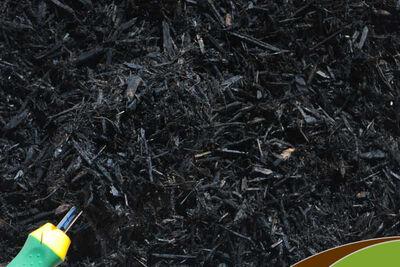 Mulch Black 2 Cubic Ft