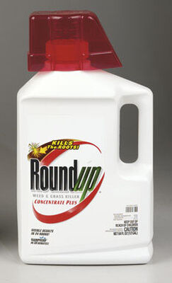 Roundup Weed and Grass Killer 1/2 gal.