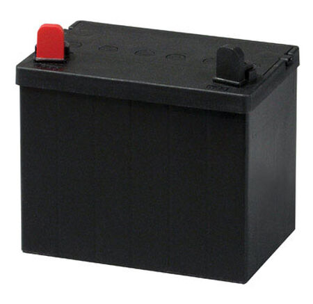 DieHard Lawn and Garden Battery 190 amps