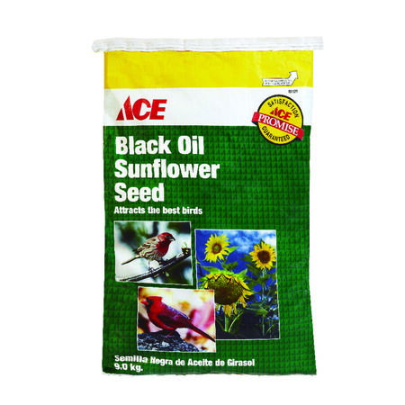 Ace Assorted Species Wild Bird Food Black Oil Sunflower Seed 20 lb.