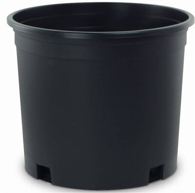 New England Pottery Nursery Container 1 Gallon Black 50ea/6.5in