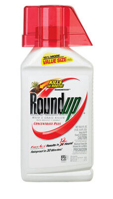 Roundup Weed and Grass Killer 36.8 oz.