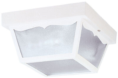 Westinghouse 2 lights White Outdoor Ceiling Fixture