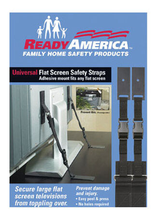 Quake Hold Flat Screen Safety Strap