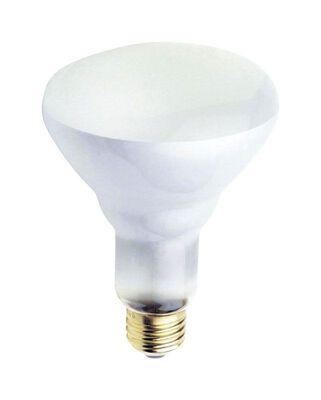 Ace 65 watts 650 lumens 2700 K Medium Base (E26) BR30 Incandescent Light Bulb Floodlight