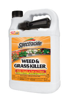 Spectracide Weed and Grass Killer 1 gal.