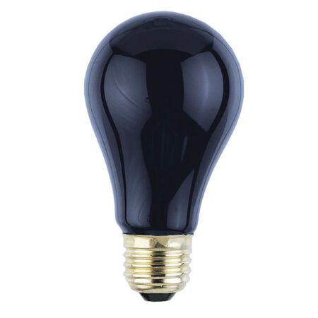 Westinghouse  75 watts A19  Incandescent Bulb  Black Light  A-Line  1 pk