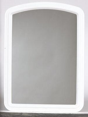 Stanley 16 in. W x 22 in. H Plastic Wall Mirror