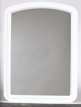 Stanley 16 in. W x 22 in. H Plastic Wall Mirror