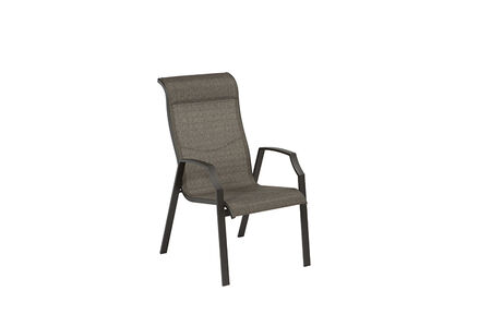 Living Accents Icarus Aluminum Frame Chair