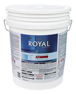 Ace Royal Flat Latex Paint & Primer Low VOC Ceiling White 5 gal.