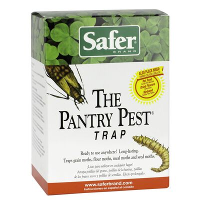 Safer Pantry Pest Solid Moth Trap .283 oz.