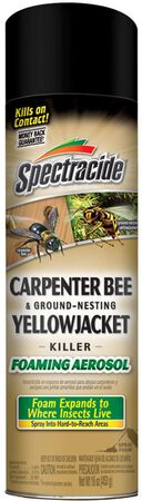 Spec Carpenter Bee/Yellow Jack 16oz
