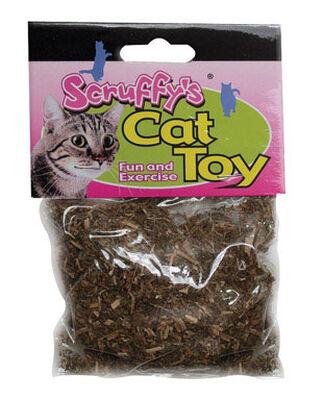 Scruffy Catnip