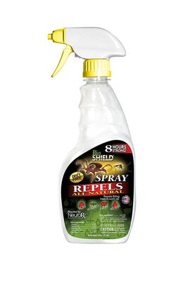 BIO SHIELD by Portland Outdoors All Natural DEET-Free 8-Hour Tick, Flea, Bed Bugs and Mosquito Repellent, 16oz Pump Spray