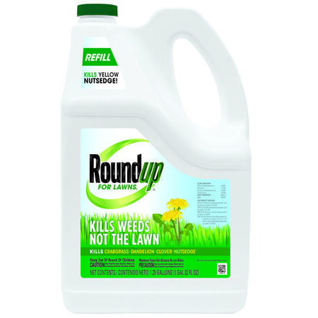 Roundup For Lawns Refill Weed Killer Liquid 1 gal.