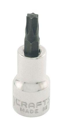 Craftsman 3/8 in. x 3/8 in. drive SAE 6 Point Standard Torx Bit Socket 1 pc.