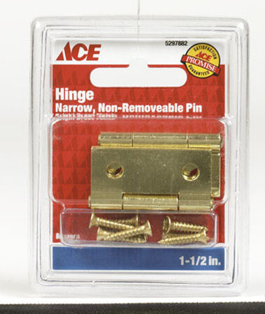 Ace 1-1/2 in. L Narrow Hinge Bright Brass
