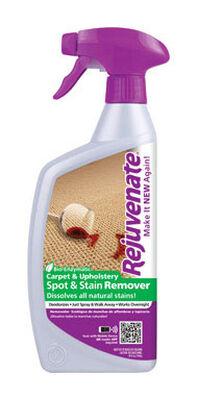 Rejuvenate Bio-Enzymzatic Carpet and Upholstery Cleaner Liquid 32
