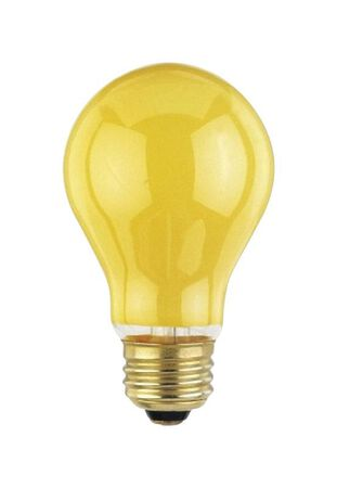 Westinghouse  Bug Light  60 watts A19  Incandescent Bulb  Yellow  A-Line  2 pk
