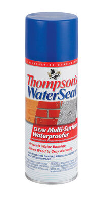 Thompson's Waterseal Water-Based Multi-Surface Waterproofer Clear 12 oz.