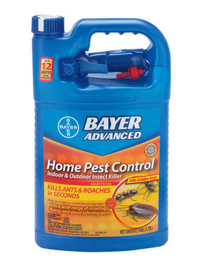 Bayer Advanced Home Pest Control Insect Killer For Ants 1 gal.