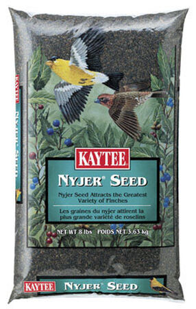Kaytee Songbird Wild Bird Food Nyjer Seed 8 lb.
