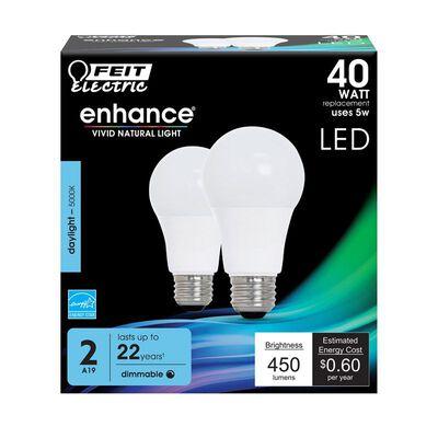 FEIT Electric LED Bulb 6.5 watts 450 lumens 5000 K A-Line A19 Medium (E26) 2 pk
