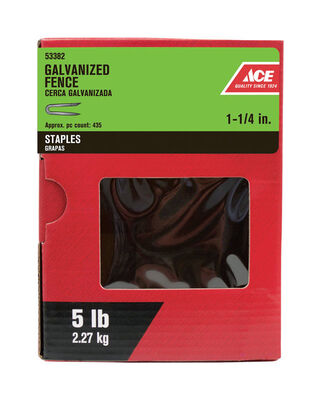 Ace 1-1/4 in. Galvanized Fence Staples 5 lb.
