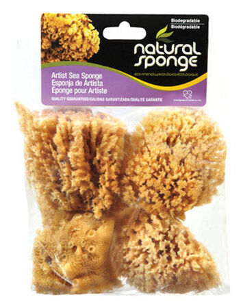ACME Faux/Artist Natural Sea Sponges 4 in. L