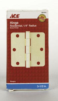 Ace Brass Residential Hinge 3-1/2 in. L Brass 1 pk