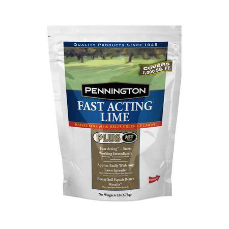 Penn ington Fast Act ing Lime 6 lb
