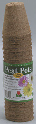 Plantation Products Peat Pot 23 Number of Cells 2.3 in.