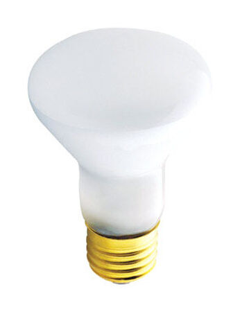 Westinghouse 45 watts 380 lumens 2700 K Medium Base (E26) Floodlight R20 Incandescent Light Bulb